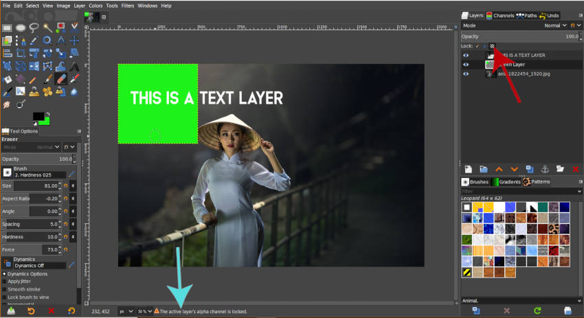 Active Layers Alpha Channel is Locked
