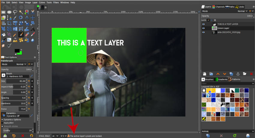 Active Layers Pixels are Locked