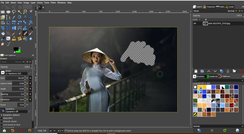 Eraser Tool with Transparent Background GIMP