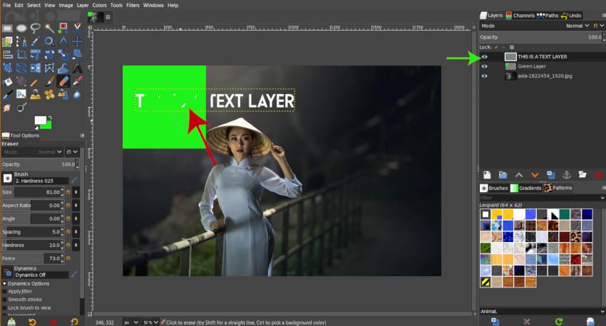 Erasing Active Layer in GIMP 2019