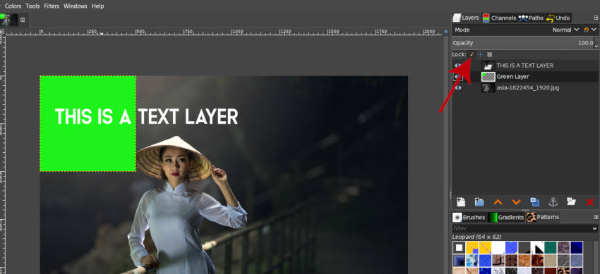 GIMP Lock Pixels Option