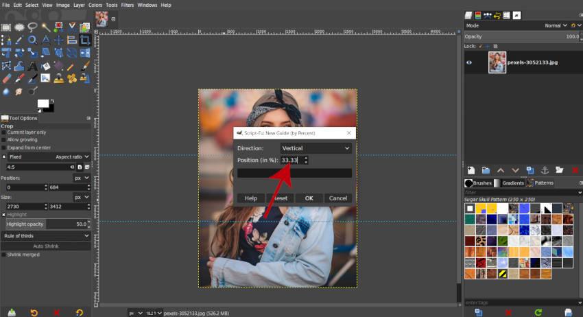 Lóðrétt handbók 33 prósent GIMP 2020