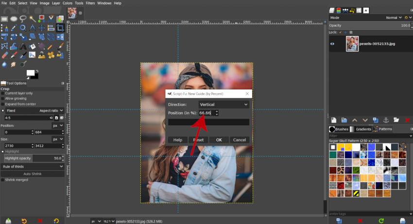 Lóðrétt handbók 66 prósent GIMP 2020
