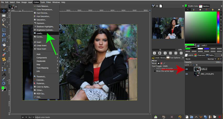 写真GIMPチュートリアルを編集するアクセスレベルツール
