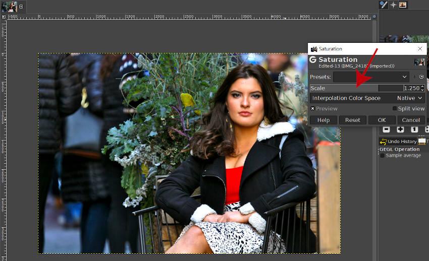GIMPスケールツールチュートリアルを使用して写真に彩度を追加する