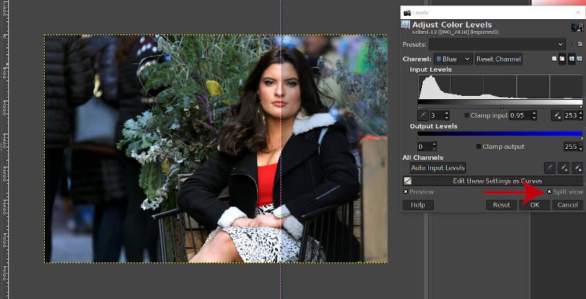 ブルーチャンネルと分割ビューGIMP写真編集の調整
