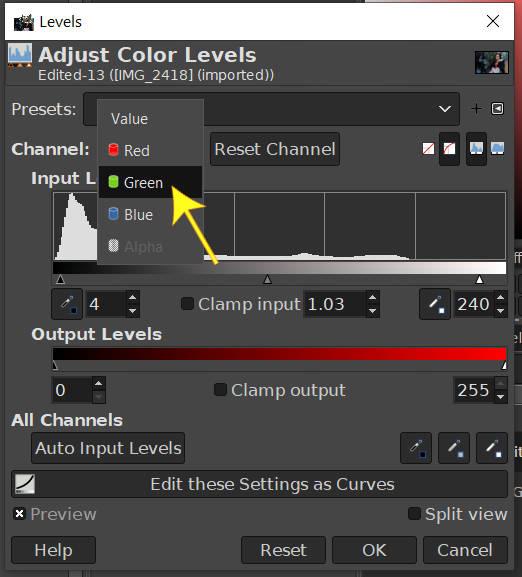 チャンネルをグリーンレベルのGIMP写真編集に変更