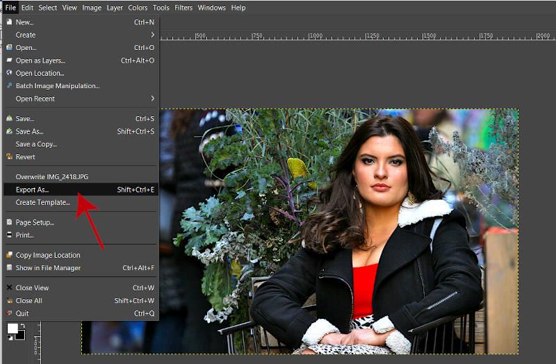 画像をJPEG GIMP 2 10 18にエクスポート