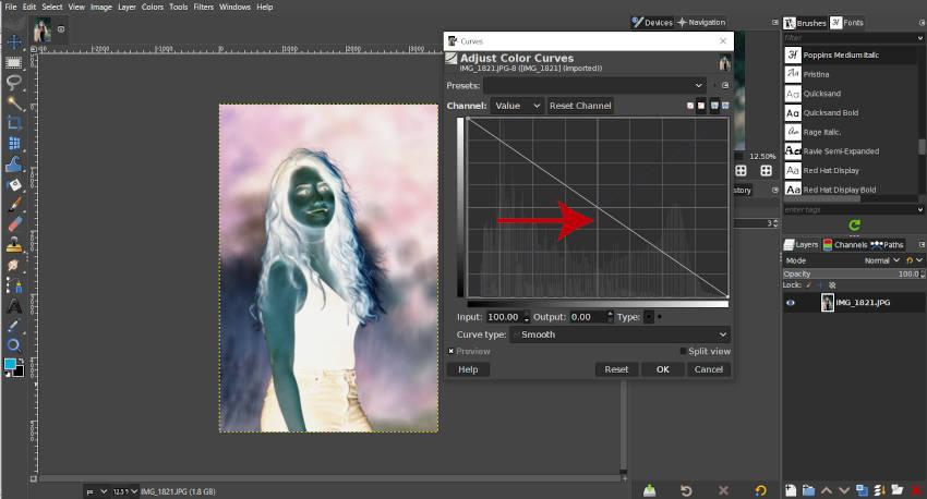 GIMP Inverted Curve-zelfstudie 2020