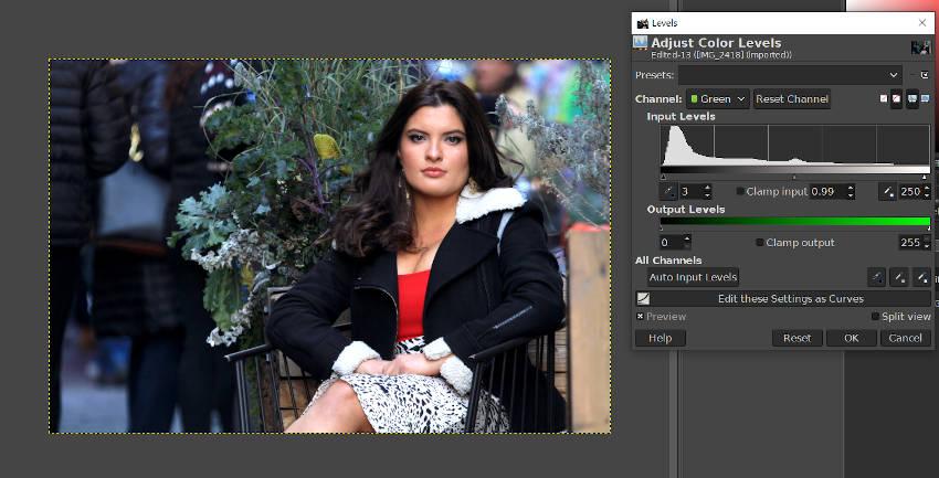 緑レベル調整GIMP写真編集チュートリアル