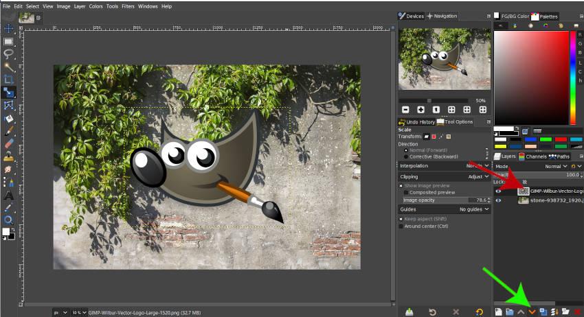 Přesuňte vrstvu dolů ve vrstvě GIMP 2020
